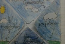 Geography / The Water Cycle
