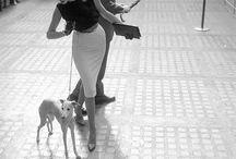 fotos con galgos, en blanco y negro ,personajes célebres ,de moda con galgos / .