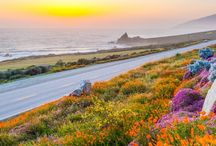 California!  My Home ☼ / by Kim Boyer