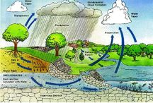 The Water Cycle / The Water/Hydrologic Cycle ideas from getwise.org, the official teacher, parent and student resource of Resource Action Programs.
