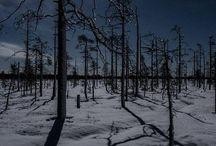 luontokuvat Suomi