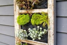 Garden / Beautiful gardens and DIY ideas / by Andrea Reay Wahl