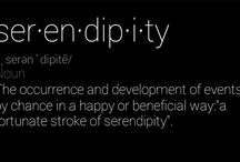 Serendipity 2