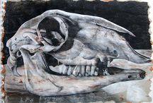 A Level Art Skulls