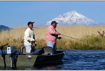 Mt. Shasta: Fishing / World-class trout fishing has made the Mt. Shasta area a favorite destination for fishermen. Wild rivers and streams feature both wonderful riffles and deep pools suitable for waders or bank fishermen. High mountain lakes offer clear water and plenty of fish both summer and winter.