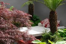 Green - Giardini e Terrazzi / Anna Paghera's Gardens and Terraces