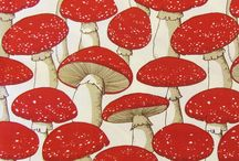 It's mushroom time! / by Sharon Schlemmer