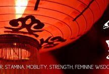 Chinese New Year Animal Totem Medicine