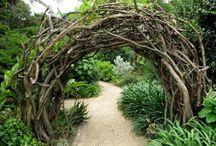 Bos poort / Een bos poort