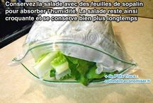 "Cuisine "" Conservation Aliments """