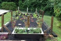 Gardening / Share your favorite gardening photos / by Old Manse Inn