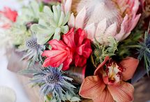Patia Garden Love / All things flora