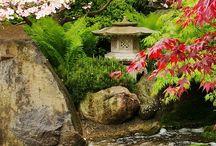 vesiaiheet puutarhassa