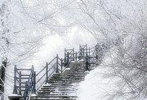 my lovely snowy Winter / La neve porta pace e silenzio nel mio animo / by Allegra Sawar