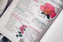 study motivation ✨