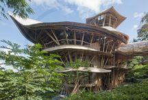 Dream House / by Sahin Designs