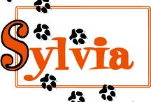 Sylvia (2013) / SEPTEMBER 12-22--Watch as a pooch comes between man and wife in the doggone funniest show of the season!  NOTE: Sylvia does contain strong language and is recommended for mature audiences. / by Quincy Community Theatre
