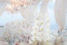 Wedding - White / White Theme
