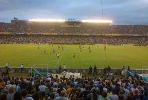 Somos Rosario