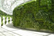Green walls / Beautiful designs from around the world