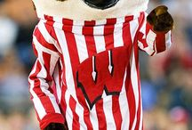 Badger Fan