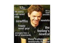 Tmr Newt memes
