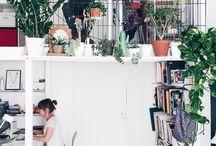 Botanical interiors / green