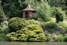Gorgeous Gardens / Gardens