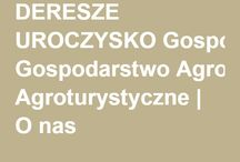 Uroczysko Deresze / Uroczysko Deresze w Giławach niedaleko Olsztyna serdecznie zaprasza do ostatniego zaścianka na Warmii.To miejsce prowadzone z pasją i sercem przez dwie kobiety Beatę i Katarzynę.