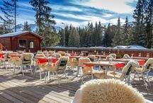 Hôtel Le New Solarium / Lodges & Mountain hotels vous présente son chouchou de Courchevel : Le New Solarium***.