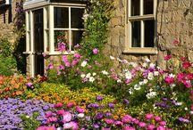 Kvetiny a venkovske zahrady