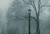 Rain / Melhor clima do mundo