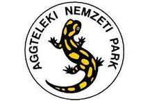Szép Magyarország: Aggteleki Nemzeti Park