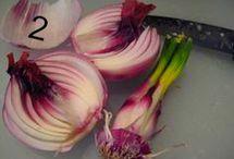 plant :-)