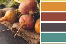 Color Schemes / by Lindsay Dudzik