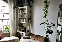 cooler house plant ideas