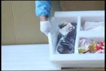 sex dolls packing
