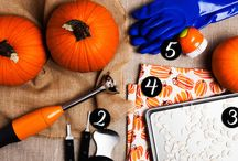 Fall Chores & Fun Activities / Fall brings cooler temps and the unofficial kickoff of the holiday season. Here you'll find fun activities to do with your family before the weather gets too cold as well as everything you need to know about prepping your home for winter!