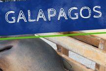 Lateinamerika Reisen / Du liebst es Lateinamerika zu entdecken? Kolumbien, Mexiko, Chile, Ecuador und noch viele andere Länder stehen auf deiner Liste? Dann wirst du hier fündig werden!