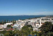 View - Napier