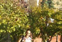 Our School / Our  School  garden