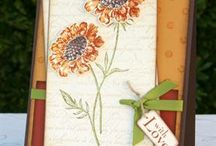 Cards/Papercrafts etc. - Misc. / by Becky Evans