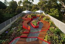 Green Roofs Rooftop Gardens