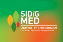 """SIDIGMED Project / The project """"SIDIG-MED"""" (Social and Intercultural Dialogue through Governance for Local development: Mediterranean Urban and Peri-urban Agriculture - UPA)."""