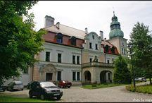 Kamieniec (śląskie) - Pałac / Pałac w Kamieńcu wzniesiony na początku XVIII w. przez Martina Scholtz von Löwenckrona, wywodzącego się z rodu bytomskich mieszczan. Ostatnimi właścicielami pałacu przed II wojną światową była rodzina Stolbergów. Hrabia Günther zu Stolberg-Stolberg w roku 1910 dokonał ostatniej jego przebudowy. Nadała ona pałacowi dzisiejszy wygląd. Obecnie w pałacu mieści się Ośrodek Leczniczo-Rehabilitacyjny dla Dzieci.