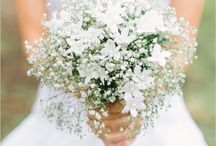 Bouquet / wedding flowers