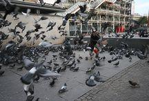 PARIS (Museé Pompidou) / clochard / potul / vagabundo / pidolaire/ homeless
