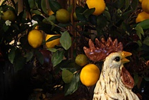 Decorating with chickens - French country decor / by Becky Lorencz