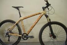Project: FreeLab Bike