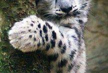 Cute #^_^#